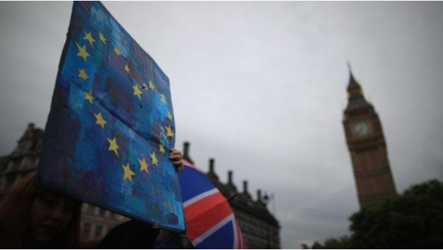 image of person holding up European flag